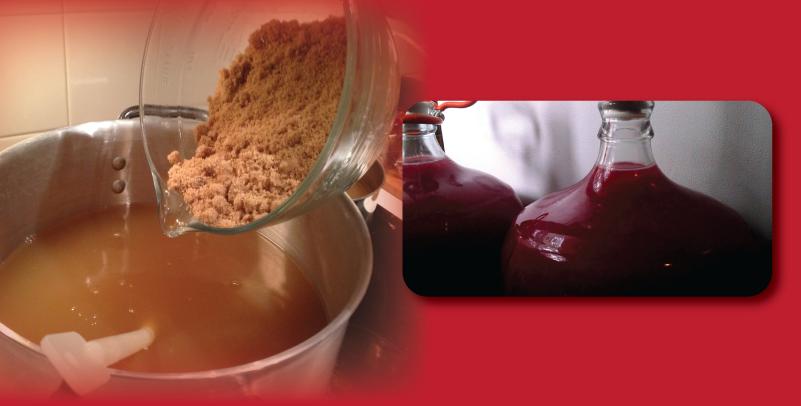 fermentation-of-cider-15